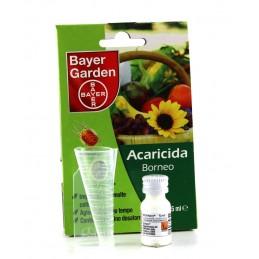 Bayer Garden BORNEO...
